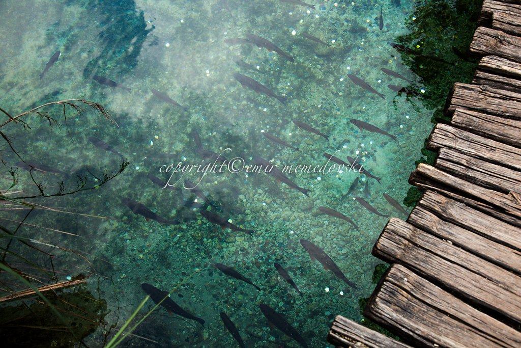 Plitvice-Lakes-Croatia-2.jpg